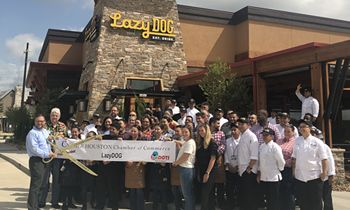 Lazy Dog Restaurant & Bar Opens in Houston's Cypress Crossing