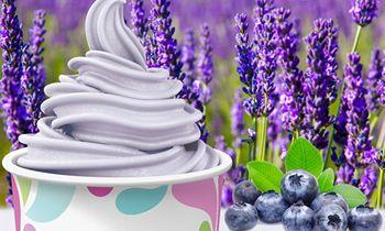Sit Back, Relax and Enjoy Yogurtland's New Blueberry Lavender Light Ice Cream