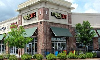 Tropical Smoothie Cafe Accelerates Targeted Expansion and Achieves Significant Growth in the First Half of 2019