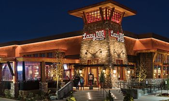 Lazy Dog Restaurant & Bar Brings Jobs and New Dining Experience to Fairfax